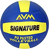AVM SIGNATURE VOLLEY BALL