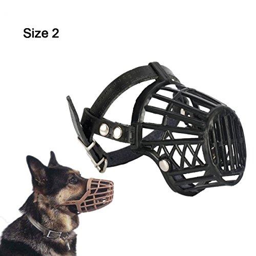 Dog Cage Training
