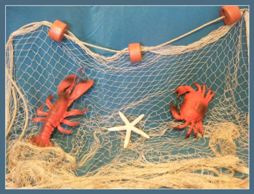 20 X 8 Ft TAN Fish NET with Floats, Lobster, Crab, Rope, Nautical Wedding Decor