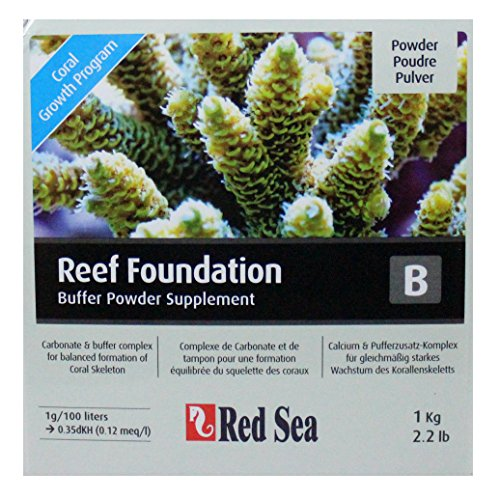 Red-Sea-Reef-Foundation-B-Complexe-de-Carbonates-Buffers-pour-la-Formation-quilibre-du-Squelette-des-Coraux-1000-g