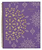 At-A-Glance Vienna Weekly and Monthly Planner 2015, Wirebound, 8.5 x 11 Inch Page Size (122-905)