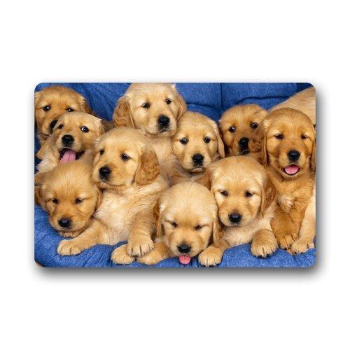Custom Indoor Dog Gates front-138222