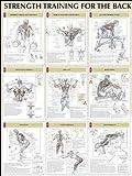 Back Poster (Strength Training Anatomy)