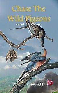 Chase The Wild Pigeons: A Novel Of The Civil War by John J. Gschwend Jr. ebook deal
