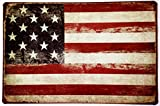 "American Flag logo Retro Vintage Tin Sign 12"" x 8"""