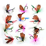 12pcs Fly Fishing Flies Set Butterfly Like Trout/Bass Floating Fishing Lure
