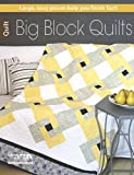 img - for Big Block Quilts (6478) by Ann D. Hansen (2015-04-03) book / textbook / text book