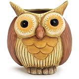 """Whimsical Hootie Owl Vase/planter 5 1/2""""tall Porcelain Vase for Home Decor"""