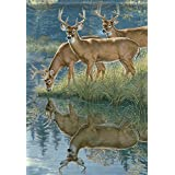 Scenic Whitetail Deer Wildlife Garden Flag Double Sided Buck Banner 13