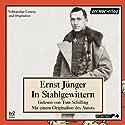 In Stahlgewittern Audiobook by Ernst Jünger Narrated by Tom Schilling, Ernst Jünger