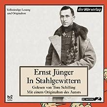 In Stahlgewittern Hörbuch von Ernst Jünger Gesprochen von: Ernst Jünger, Tom Schilling