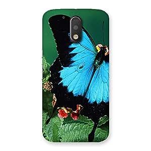 Ajay Enterprises blue beautifull betterfly Back Case Cover for Motorola Moto G4 Plus