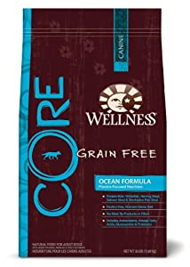 Wellness CORE Ocean Formula Dry Dog, 26-Pound Bag