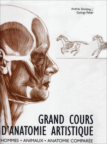anatomie humaine a lusage des artistes