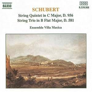 String Quintet/String Trio