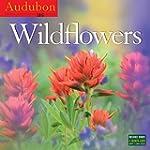 Audubon Wildflowers Wall Calendar 2016