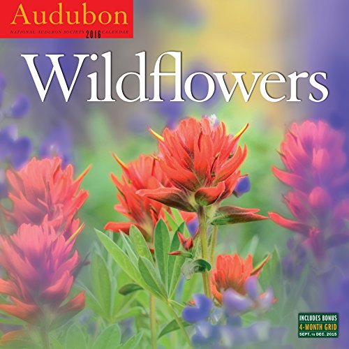 Audubon Wildflowers Wall Calendar 2016 - National Audubon Society