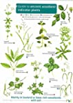 Guide to Ancient Woodland Indicator P...