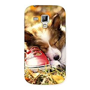 Ajay Enterprises Fill Cute Sleeping Puppy Back Case Cover for Galaxy S Duos