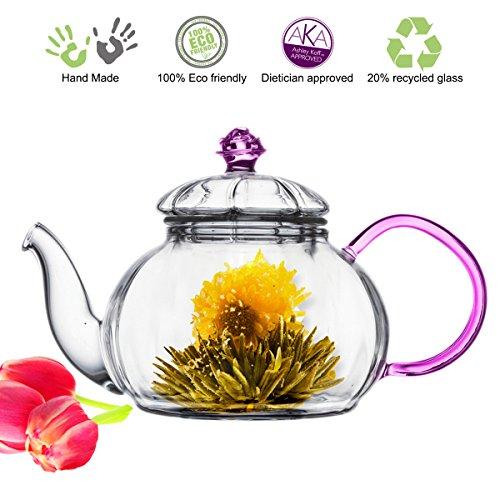 Tea Beyond Heat resistant Glass Teapot Juliet, 20-Ounce (Heat Resistant Glass Tea Kettle compare prices)