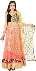 International Craft Women's Net Lehenga Choli (IC003, Pink, S)