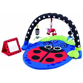 Sassy Baby Toddler Child Crib Stroller Playmat Gym Activity Sensory Toy Collect