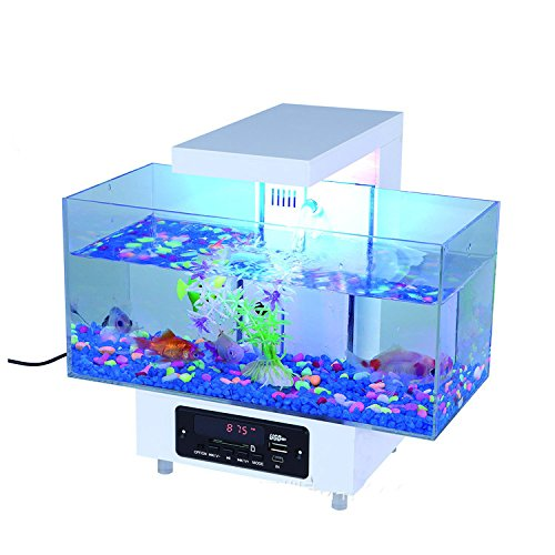 acrylglas aquarium preisvergleiche erfahrungsberichte und kauf bei nextag. Black Bedroom Furniture Sets. Home Design Ideas