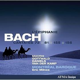 Bach: Cantatas BWV 72, 81, 155 & 156