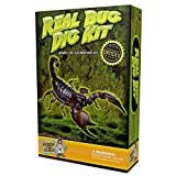 Discover with Dr. Cool Real Insect Excavation Science Kitby Discover with Dr. Cool