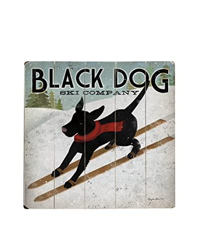 Artehouse Black Dog Ski Company Wood Wall Décor, Black/White