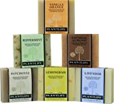 Top 6 Natural Aromatherapy Herbal Soaps - 4 oz each