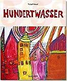 img - for Hundertwasser book / textbook / text book