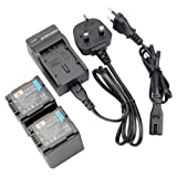 DSTE® 2pcs VW-VBG260 Rechargeable Li-ion Battery + Charger DC61U for Panasonic VBG260, AG-AC7, AG-AF100, AG-HMC40, AG-HMC80, AG-HMC150, HDC-HS250, HDC-HS300, HDC-HS700, HDC-SD600, HDC-SD700, HDC-SDT750, HDC-TM300, HDC-TM700, SDR-H80 Digatal Camera