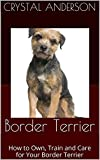 Border Terrier: How to Own, Train and Care for Your Border Terrier
