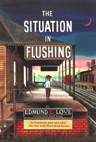 The Situation in Flushing (Great Lakes Books Series)