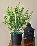 Ginni Bloom Artificial Mini Eucalyptus Bush