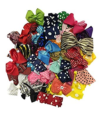 Barrettes for Girls - Hair Clips for Women - Assorted Hair Accessory by CoverYourHair