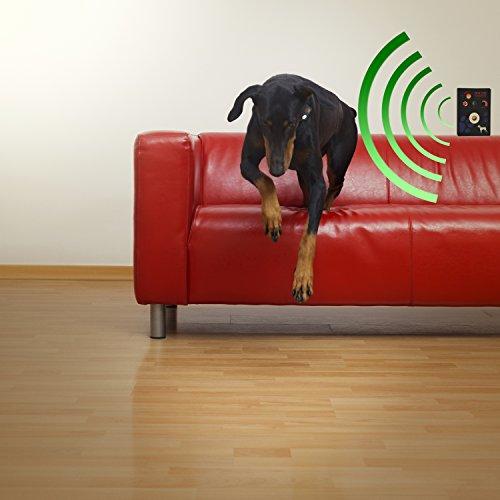 Электроошейник для собак Sound Barrier Indoor
