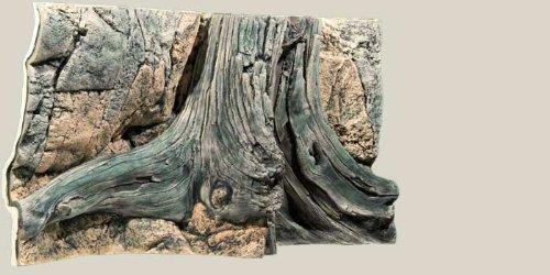 aquarienruckwand-amazonas-100x50cm