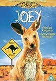 Joey [DVD]