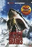 Avalanche Sharks - Region 3 Import Rare
