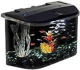 Koller-Craft Aq15005 Aquarius Aquarium Kit, 5-Gallon