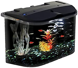 Koller-Craft Aq15005 Aquarius Aquarium Kit, 5-Gallon