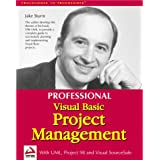Professional Visual Basic Project Management