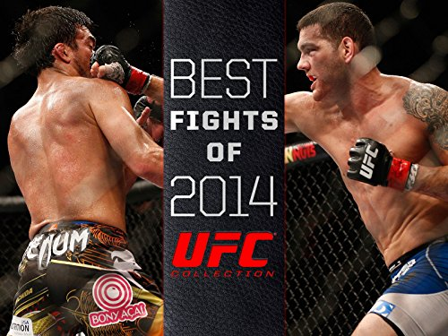 Best Fights of 2014