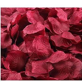 AccessoryStation® Décoration rouge 1000pcs soie artificielle fleur rose Pétales de Tableau de mariage Confetti nuptiale de soirée de mariage