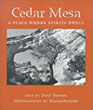 Cedar Mesa: A Place Where Spirits Dwell (Desert Places) (0816522340) by Petersen, David