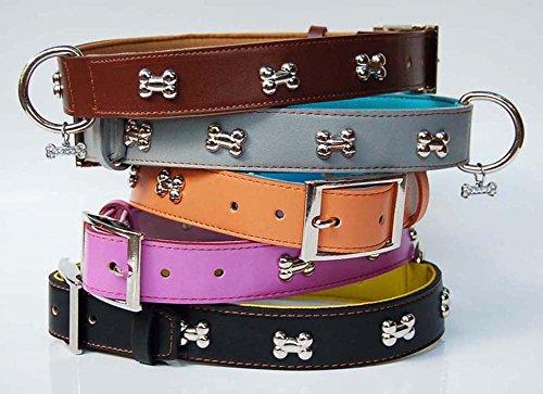 cj-dog-collars-soft-padded-real-genuine-leather-sturdy-quality-bone-charm-collar-x-large-black-light