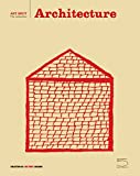 img - for Architecture: Art Brut Series (Art Brut the Collection) by Pascale Marini-Jeanneret (2016-03-15) book / textbook / text book