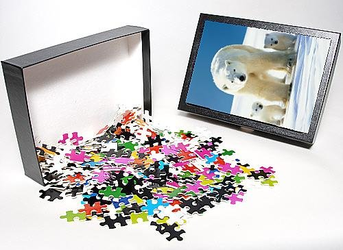 Photo Jigsaw Puzzle Of Polar Bear - Parent With Cubs front-951770